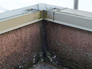 Metal-cap-over-parapet-wall-on-commercial-roof