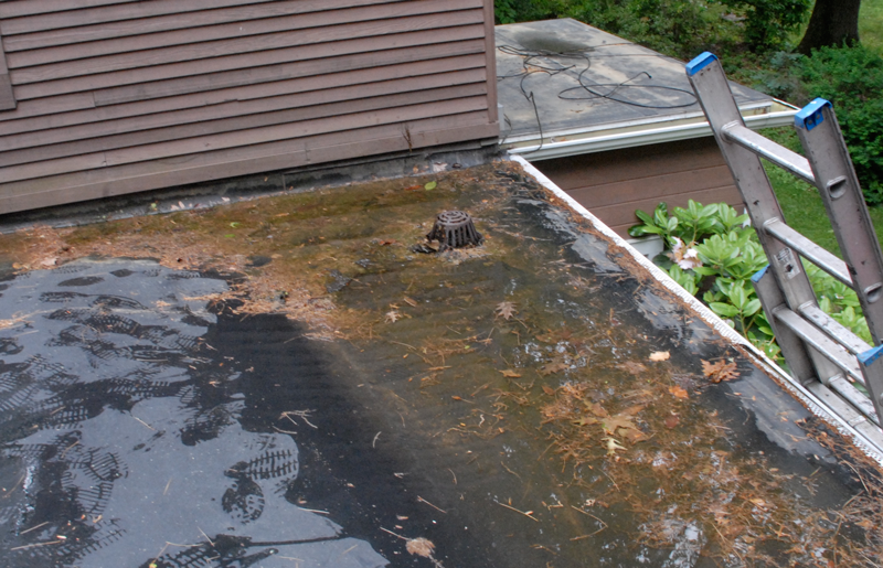 Drain positioned at low part of roof but nor recessed therefor collecting debris